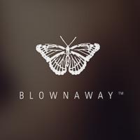 blownaway logo testimonials